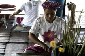 lotus-farm-by-samatoa