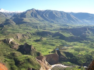 Colca-Canyon.peru_